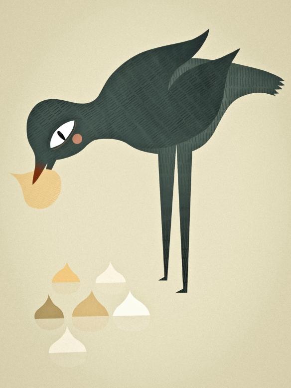 BirdinaTurnipPatch